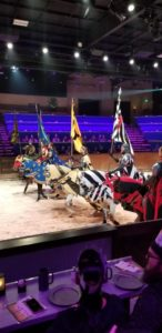Medieval Times fun family entertainment